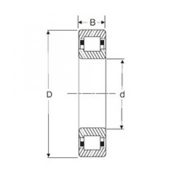50 mm x 110 mm x 27 mm  SIGMA NUP 310 cylindrical roller bearings