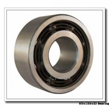 65 mm x 120 mm x 23 mm  NACHI NU 213 E cylindrical roller bearings