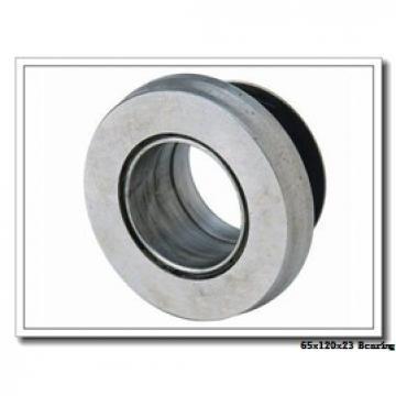 65 mm x 120 mm x 23 mm  NKE NUP213-E-M6 cylindrical roller bearings