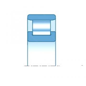 65,000 mm x 120,000 mm x 23,000 mm  NTN N213E cylindrical roller bearings