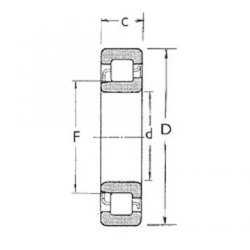 65 mm x 120 mm x 23 mm  FBJ NJ213 cylindrical roller bearings