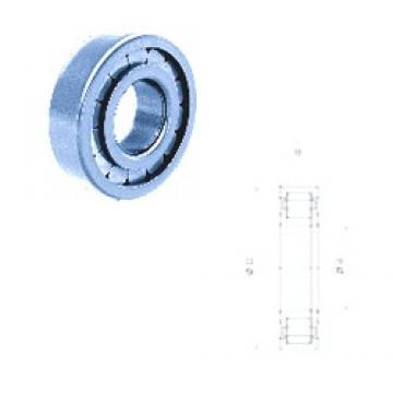 65 mm x 120 mm x 23 mm  Fersa NUP213FPNR/C3 cylindrical roller bearings